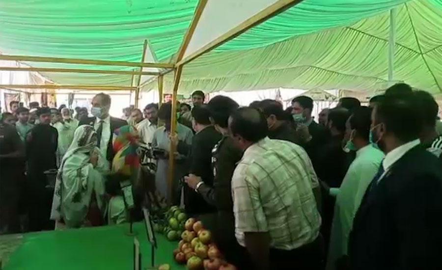 وزیر اعلیٰ پنجاب کا اوکاڑہ اور دیپالپور کا دورہ ، سہولت بازاروں کا جائزہ لیا