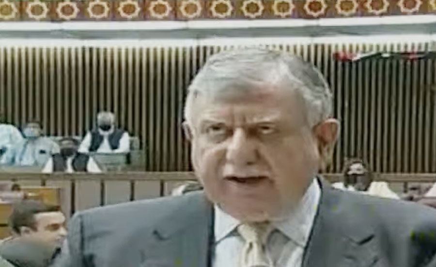 وزیر خزانہ نے قومی اسمبلی میں مالی سال 2021-22 کا بجٹ پیش کردیا