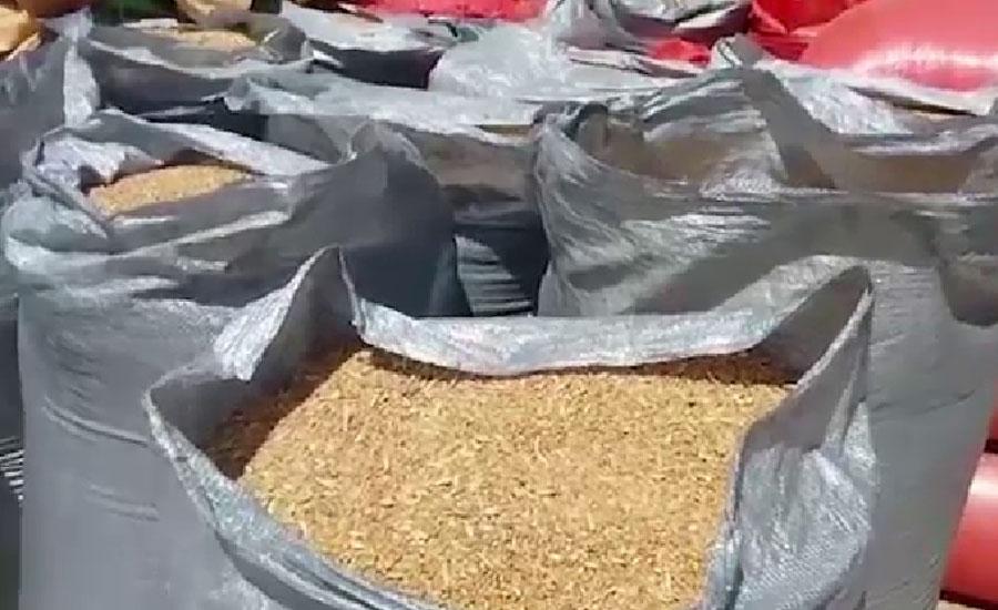 پنجاب میں گندم خریداری مکمل ، آٹے کی قیمت کا مسئلہ سر اٹھانے لگا