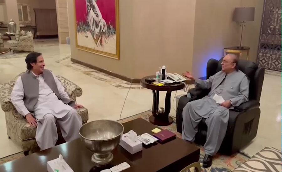 پرویزالہٰی کی آصف علی زرداری سے ملاقات، ملکی سیاسی صورتحال پر تبادلہ خیال