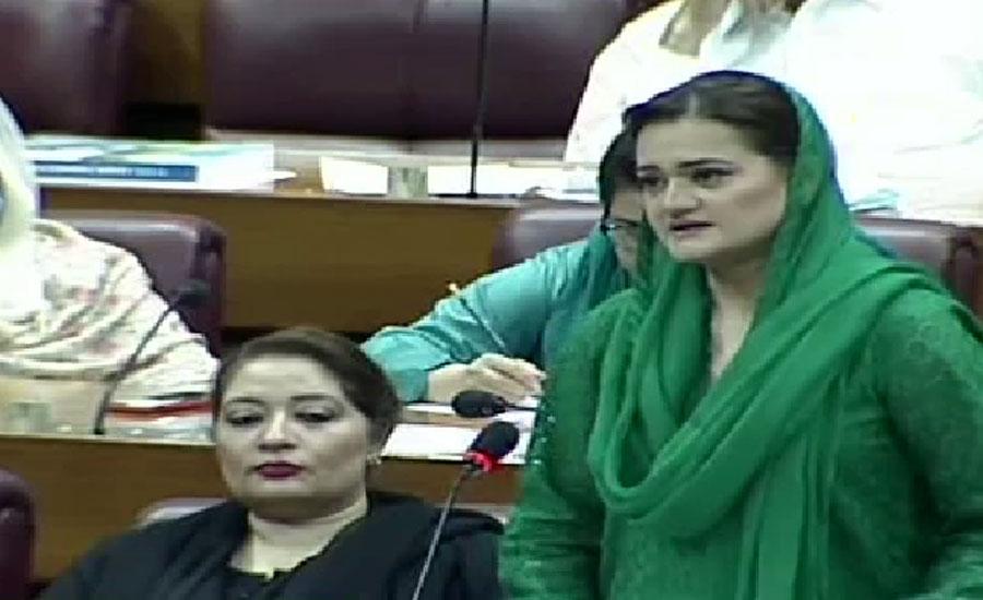 عمران خان کے زکوٹا جن نے تمام محکموں کا بیڑا غرق کر دیا ، مریم اورنگزیب